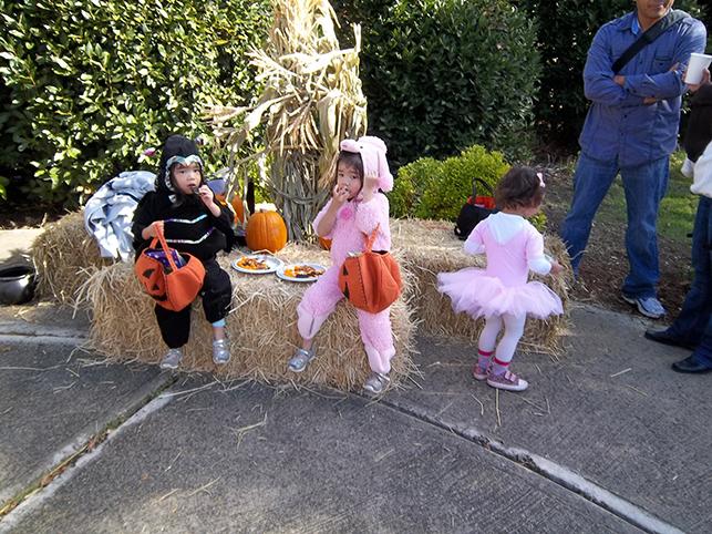 100_0278-x-halloween.jpg